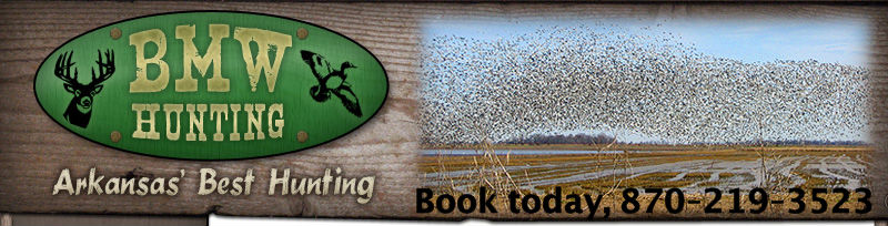 Arkansas Duck Hunting Lease